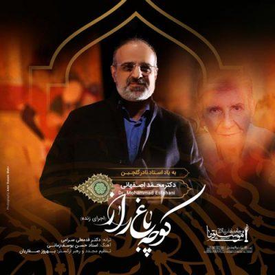 دانلود آهنگ اجرای زنده آهنگ محمد اصفهانی به نام کوچه باغ راز