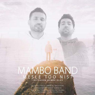 دانلود آهنگ گروه مامبو باند مثل تو نیست